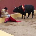 byk y matador